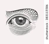 vector engraved eye... | Shutterstock .eps vector #383115586