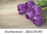 bunch of purple tulips on... | Shutterstock . vector #383129290