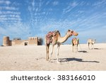 camels in front of the historic ... | Shutterstock . vector #383166010