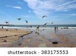 ocean gulls and people lisbon   Shutterstock . vector #383175553
