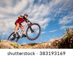 low  wide angle portrait... | Shutterstock . vector #383193169