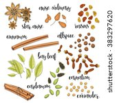 set of spices in the sketch .... | Shutterstock . vector #383297620