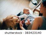 Stock photo mother playing with her baby and dog 383423140