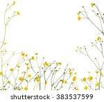 Group Of Wild Golden Buttercup...