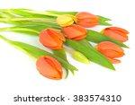 Bunch Of Tulips Isolated On...