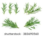 Sprigs Of Rosemary On A White...