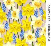 daffodil and muscari vector... | Shutterstock .eps vector #383712910