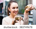 Stock photo positive female customer watching two small tortoises in petshop 383749678