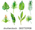 set of tropical plants ... | Shutterstock . vector #383753908