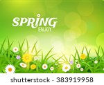 grass   flowers background.... | Shutterstock .eps vector #383919958