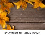 Orange Lily On Wooden Background
