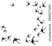 card with flock of swallows.... | Shutterstock .eps vector #384027340