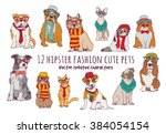 Cute Cats And Dogs Fashion...