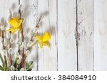 yellow narcissus flowers on... | Shutterstock . vector #384084910