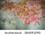 vintage sakura flowers   Shutterstock . vector #384091090