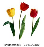 tulip set the art  vector...