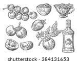 set of hand drawn tomatoes.... | Shutterstock .eps vector #384131653
