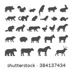 black silhouettes farm and wild ... | Shutterstock .eps vector #384137434