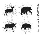vintage set of wild animals.... | Shutterstock .eps vector #384170284