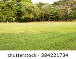 vachirabenjatas park  rot fai... | Shutterstock . vector #384221734