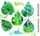 watercolor vector spring...   Shutterstock . vector #384264358
