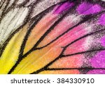 Macro closeup of butterfly wing ...