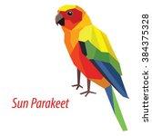 colorful sun parakeet bird low... | Shutterstock .eps vector #384375328