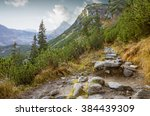 hiking trail in tatra national... | Shutterstock . vector #384439309