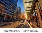 sun peaking through the trees... | Shutterstock . vector #384443086