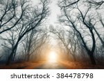 the road passing through scary... | Shutterstock . vector #384478798