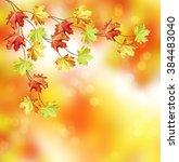 autumn foliage. golden autumn.... | Shutterstock . vector #384483040