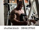 male bodybuilder doing heavy... | Shutterstock . vector #384619960