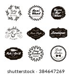 retro vintage logotypes and...   Shutterstock .eps vector #384647269