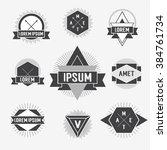 black and white hipster logo.... | Shutterstock . vector #384761734