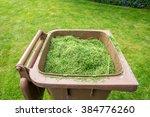 grass cutting  bin | Shutterstock . vector #384776260
