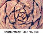 texture bumps | Shutterstock . vector #384782458