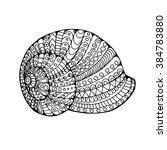 shell  zentangle patterned... | Shutterstock .eps vector #384783880