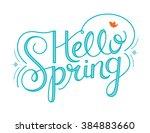 hello spring hand lettering | Shutterstock .eps vector #384883660