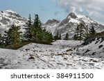 pine trees on the snow covered... | Shutterstock . vector #384911500