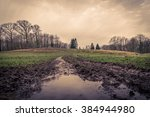 Puddle At A Muddy Road In The...