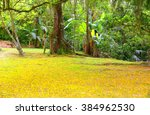 Yellow Natural Carpet. Ground...