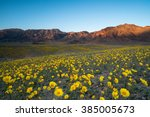 wildflower super bloom in... | Shutterstock . vector #385005673