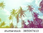 coconut tree at tropical coast... | Shutterstock . vector #385047613