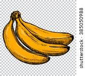 banana.sketch vector... | Shutterstock .eps vector #385050988