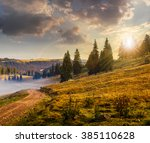 path through meadow down the hillside to coniferous forest  on the mountain in evening light - stock photo