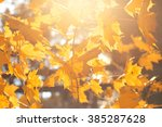 celso fall and fog  golden... | Shutterstock . vector #385287628