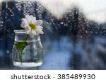 Flower In A Glass Vase Stands...