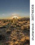 Wide Shot Of Desert Scene At...