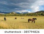Mountain Horse Ranch   Autumn...