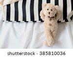 Teddy Bear Lying In The Bed